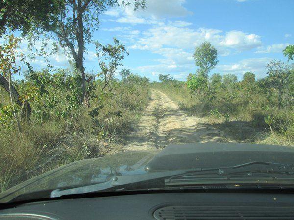 Fazenda Ponte Alta - TO - Foto 11