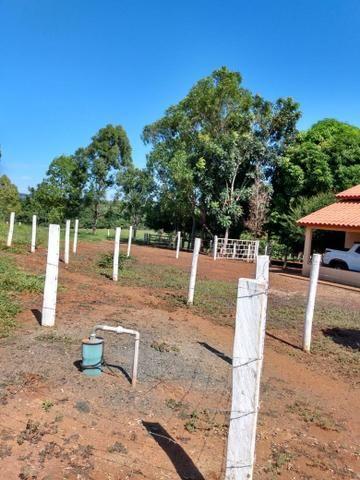 Fazenda, terra boa e pronta! - Foto 3