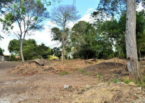 Terreno à venda em Novo, Carpina cod:TE09W - Foto 10
