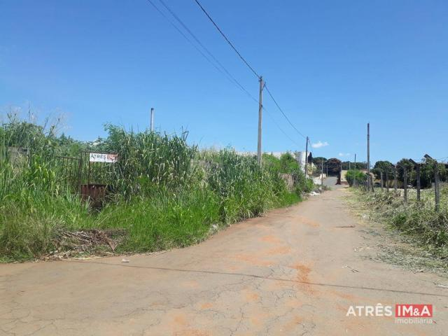 Terreno para alugar, 2505 m² por r$ 4.500,00/mês - santa genoveva - goiânia/go - Foto 3