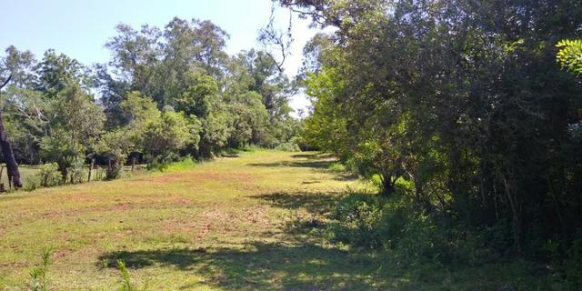 Terreno Exclusivo no Berto Círio, Nova Santa Rita - Foto 2
