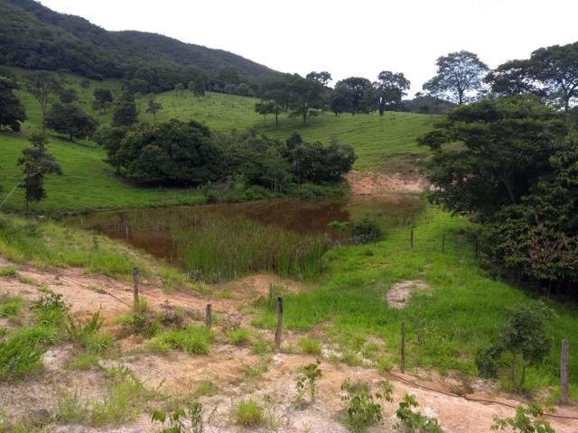 Fazenda taquaral 990.000.00 - Foto 2