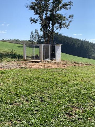 Troco ou vendo chácara em Quitandinha por imóvel em Curitiba ou Balneário Camboriú - Foto 5