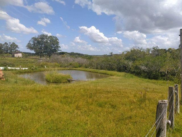 Velleda oferece sitio 3 hectares com casa e 2 açudes - Foto 6