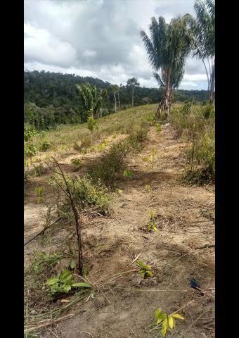 V/t terreno na Bahia - Foto 2