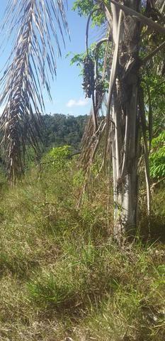 V/t terreno na Bahia - Foto 8