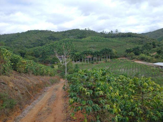 Propriedade 10 alqueires Araguaia - Foto 14