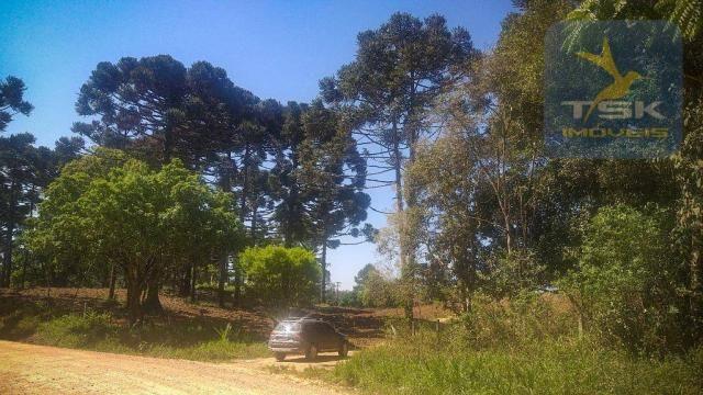 CH0407 - Chácara à venda, 2,5 Alqueires por R$ 195.000 - Zona Rural - Quitandinha/PR - Foto 10