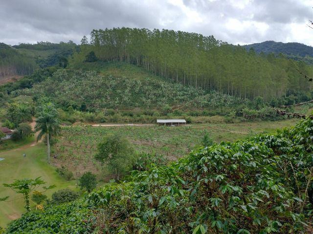 Propriedade 10 alqueires Araguaia - Foto 11