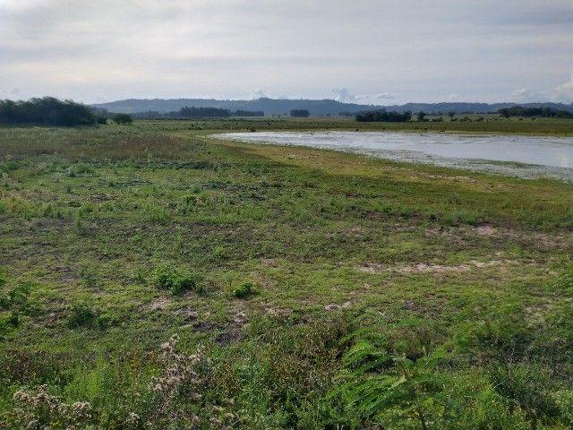 Vendo 40 hectares - Foto 6