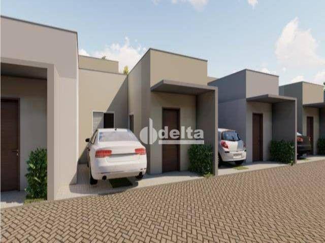 Casa com 2 dormitórios à venda, 54 m² por R$ 150.000,00 - Santo Antônio - Uberlândia/MG - Foto 13