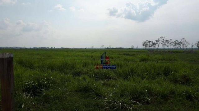 Fazenda muito bem localizada nas proximidade de Cujubim/RO - Foto 12