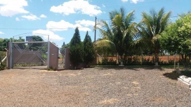 Chácara à venda em Fernandopolis, Fernandopolis cod:V5706 - Foto 10