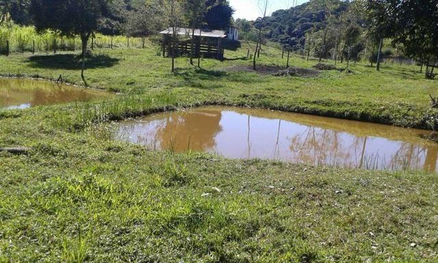 Belíssimo sítio em Cachoeiras de Macacu RJ 122 oportunidade!!! - Foto 2