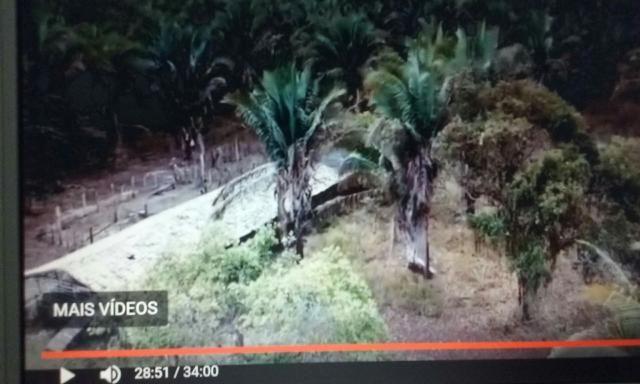 Faz. de 1100 hectares em Barras -Pi - Foto 5