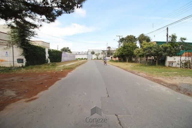 Terreno para barracão, no  Boqueirão - Foto 4