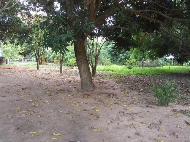 Chacara - Foto 5