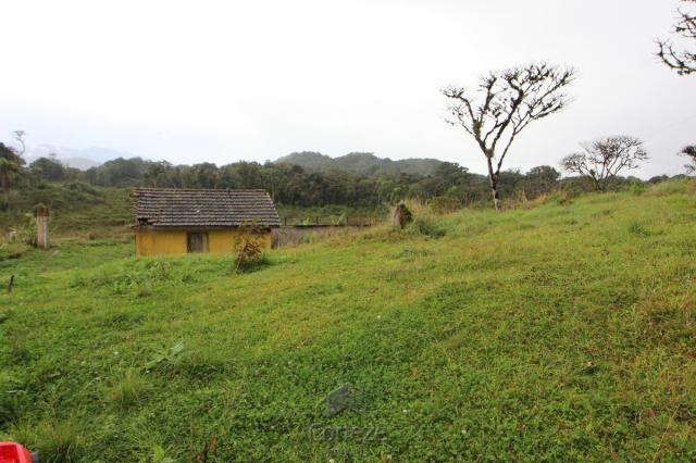 Chácara no Barro Branco em São José dos Pinhais - Foto 6