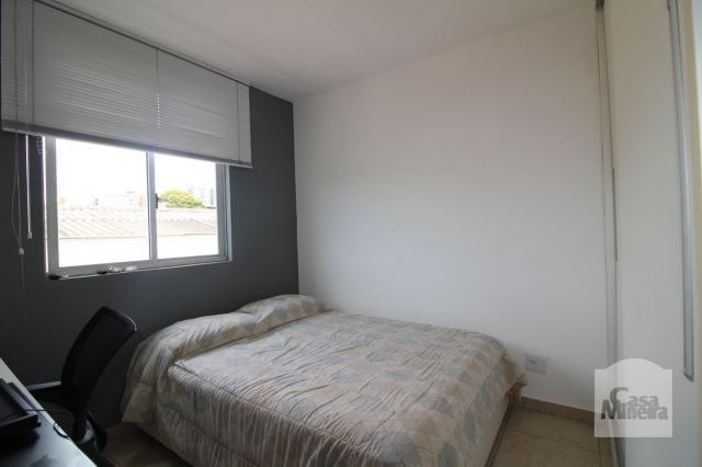 Apartamento à venda com 4 dormitórios em Calafate, Belo horizonte cod:240539 - Foto 5