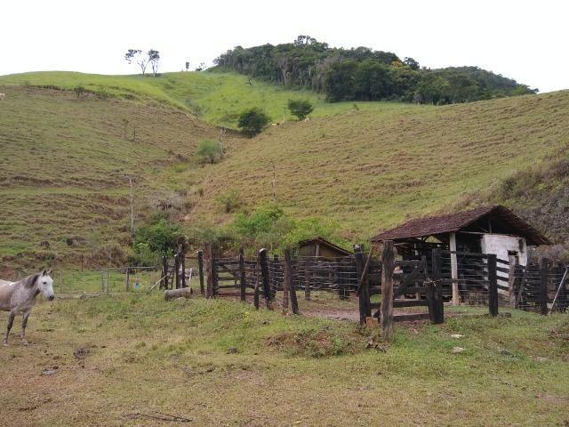 Fazenda de 150 alqueires ou seja 7.200.000 m² em Casimiro de Abreu, RJ - Foto 10