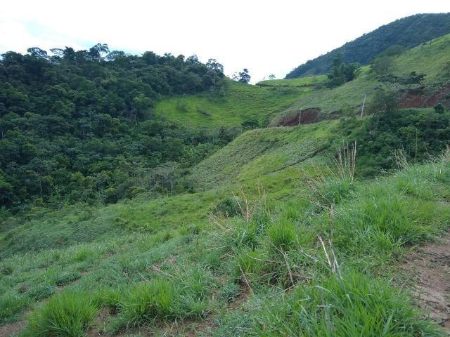 Fazenda de 150 alqueires ou seja 7.200.000 m² em Casimiro de Abreu, RJ - Foto 17
