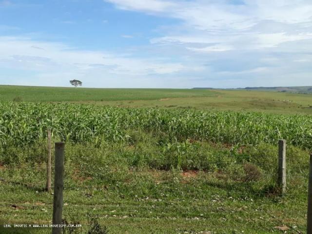 Fazenda para venda em estrela do norte, zona rural, 3 dormitórios, 1 suíte, 1 banheiro