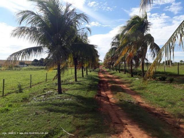 Fazenda para venda em estrela do norte, zona rural, 3 dormitórios, 1 suíte, 1 banheiro - Foto 12