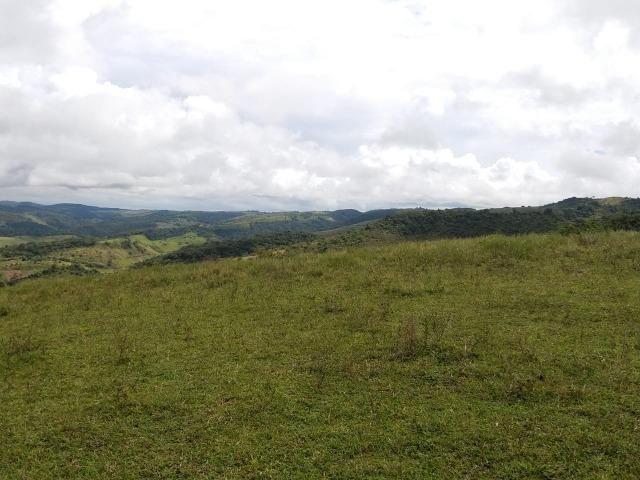 Temos Sua Fazenda de 65 hectares a 1.200 Hectares na Região de Pernambuco/PE - Foto 4