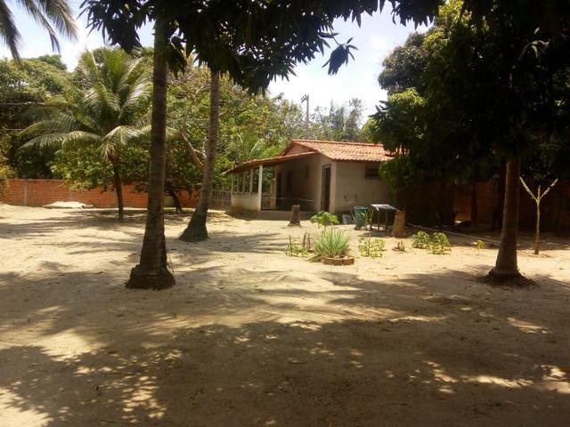 Vendo um Sítio em Tibumba - Foto 6