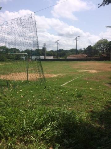 Ótimo Sítio 1,6 Hectares na Área Rural de Olinda, Aceito Automóvel ou imóvel - Foto 5