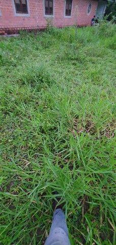 Chácara com 7 Hectares de Área em Aldeia - Foto 20