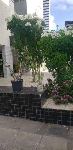 2 quartos 2 banheiros - Casa Caiada - 50m do mar - Foto 12