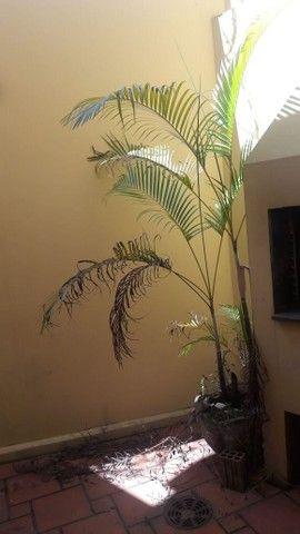 Alugo Sobrado em condomínio, 3D, Centro de Canoas, suíte, closet, churrasqueira - Foto 13