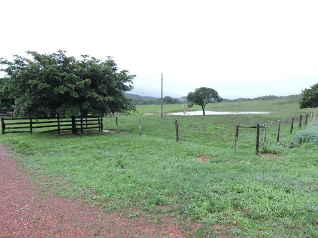 Fazenda 80 Alqueires Municipio Vila Propricio - Foto 6