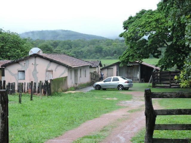 Fazenda 80 Alqueires Municipio Vila Propricio