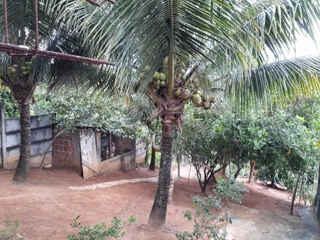 Vendo está casa com terreno. em Cajazeiras11 - Foto 5