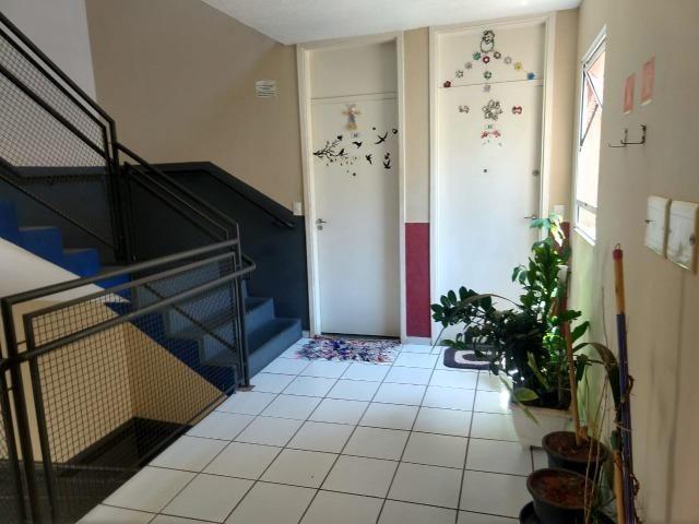 Apartamento Cdhu No Matao Condominio Camanducaia Sumare - Foto 8