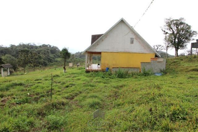 Chácara no Barro Branco em São José dos Pinhais - Foto 10