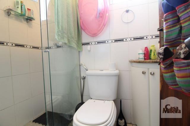 Apartamento à venda com 4 dormitórios em Calafate, Belo horizonte cod:240539 - Foto 11