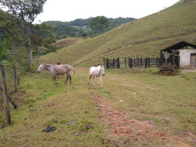 Fazenda de 150 alqueires ou seja 7.200.000 m² em Casimiro de Abreu, RJ - Foto 14