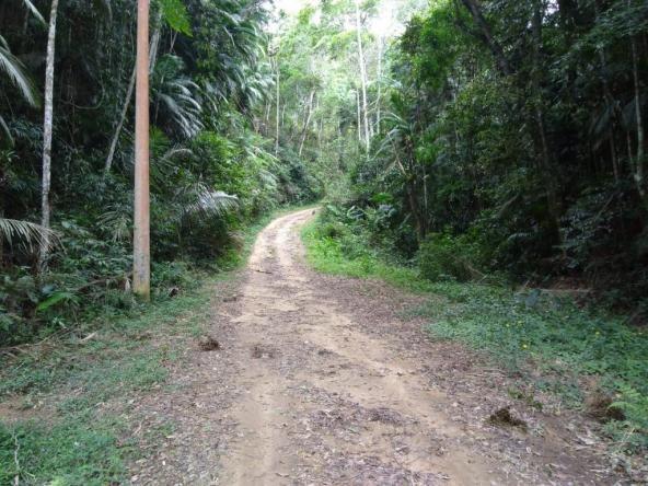 Terreno à venda, 3020 m² por r$ 56.000 - fazenda boa fé - teresópolis/rj - Foto 2