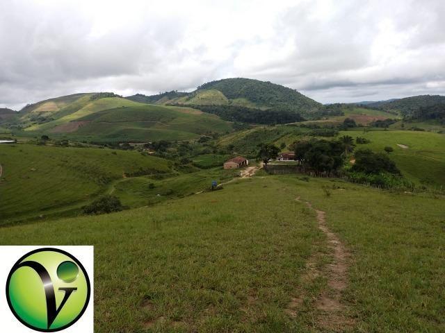 Temos Sua Fazenda de 65 hectares a 1.200 Hectares na Região de Pernambuco/PE - Foto 9