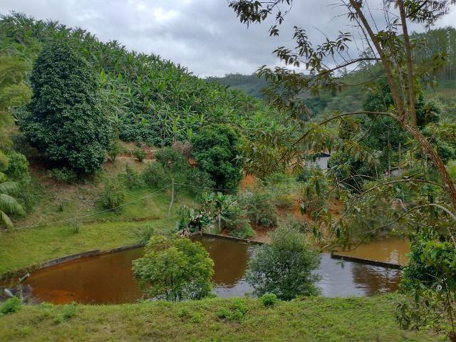 Propriedade 10 alqueires Araguaia - Foto 8