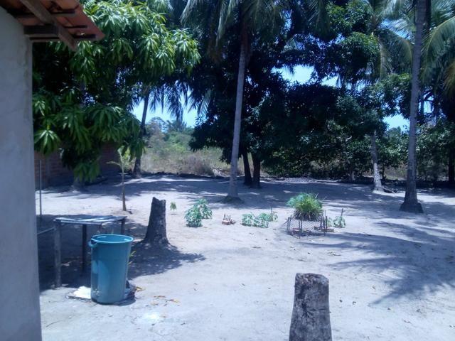 Vendo um Sítio em Tibumba - Foto 3