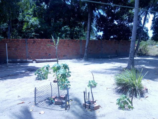 Vendo um Sítio em Tibumba - Foto 18