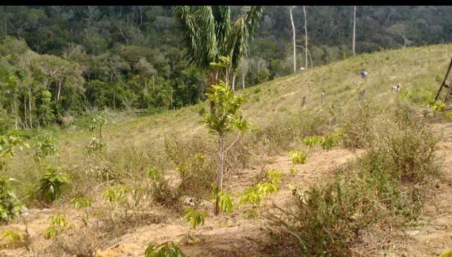 V/t terreno na Bahia - Foto 3