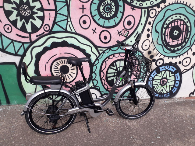Bicicleta elétrica Ebike L