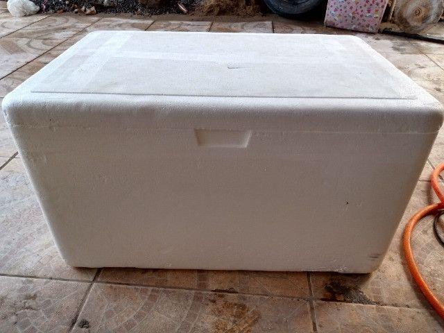 Caixa de isopor (80 e 60 litros)
