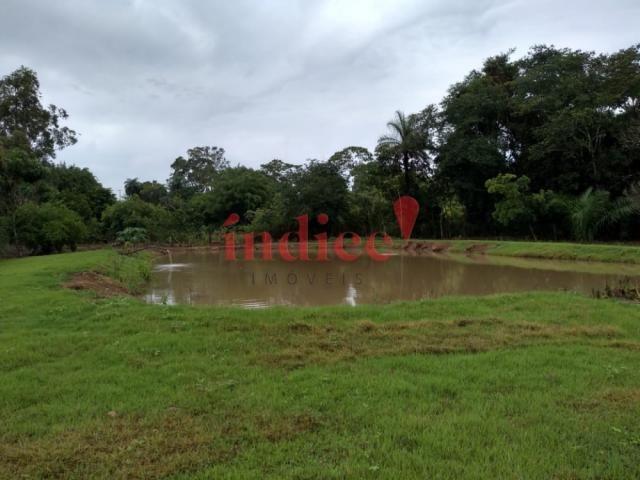 Sítio à venda com 2 dormitórios em Zona rural, Luís antônio cod:V17521 - Foto 9