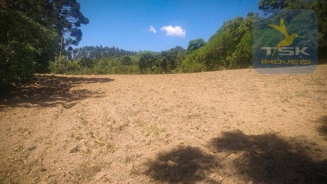 CH0407 - Chácara à venda, 2,5 Alqueires por R$ 195.000 - Zona Rural - Quitandinha/PR - Foto 8